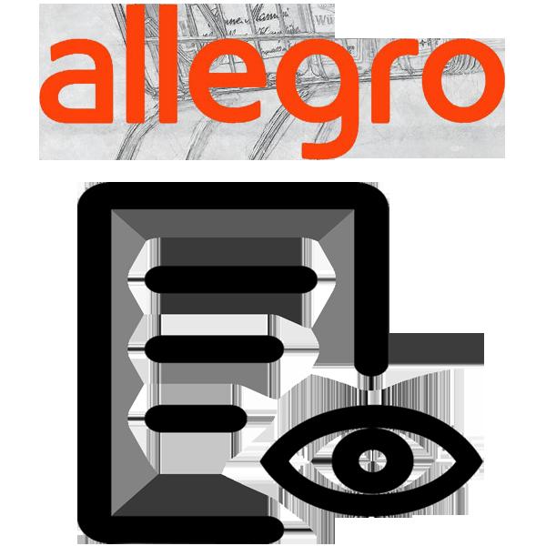 Audyt aukcji Allegro